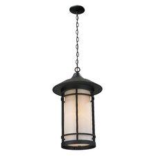 Woodland 1 Light Outdoor Hanging Lantern