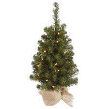Felton 2' Green Pine Artificial Christmas Tree with 35 Clear Lights