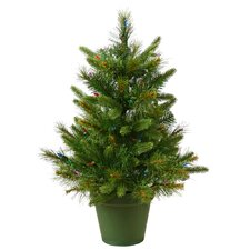 Cashmere 2' Green Pine Artificial Christmas Tree 50 LED White Lights