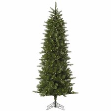 Carolina Pencil 10' Green Spruce Artificial Christmas Tree with 550 LED White Lights