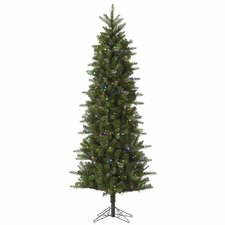 Carolina Pencil 8' Green Spruce Artificial Christmas Tree with 500 LED Multi-Colored Lights