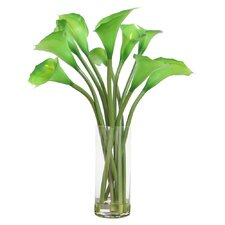 Floral Calla Lillies in Cylinder