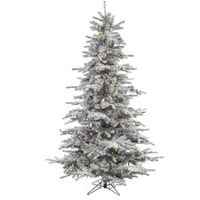 6.5' Flocked Sierra Fir Artificial Christmas Tree with LED Multi Lights