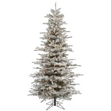 6.5' Flocked Slim Sierra Artificial Christmas Tree 550 LED Clear Dura-Lit Lights
