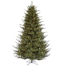 9.5' Itasca Frasier Christmas Tree with 1300 LED Clear Dura-Lit Lights with Stand