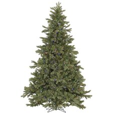 6.5' Frasier Fir Christmas Tree with 500 LED Multi Colored Lights