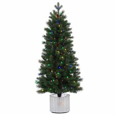 5' Stockton Spruce Christmas Tree with 200 LED Multi Colored Lights