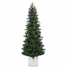 6' Stockton Spruce Christmas Tree with 300 LED Multi Colored Lights