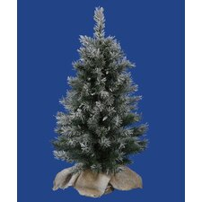 2.5' Frosted Jackson Pine Artificial Christmas Tree