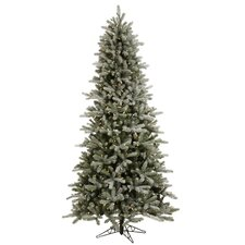 6.5' Frosted Frasier Artificial Christmas Tree with LED Warm Clear Lights