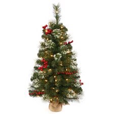 2.5' Nisswa Berry Pine Christmas Tree with Clear Lights