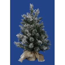 2' Frosted Jackson Pine Artificial Christmas Tree