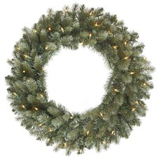 "24"" Lighted Artificial Colorado Spruce Christmas Wreath"