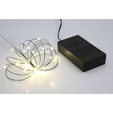 Multi Function Christmas Light