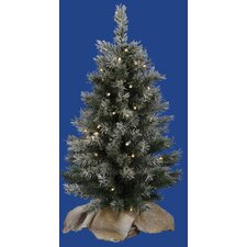 2.5' Flocked Jackson Pine Christmas Tree with Clear Lights