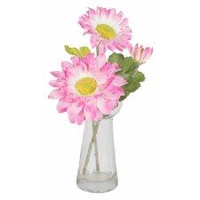Gerbera Daisy Desk Top Plant in Decorative Vase