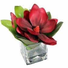Floral Single Magnolia in Glass Vase