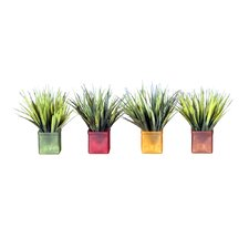 Floral Mini Grass in Square Acrylic Pot (Set of 4)
