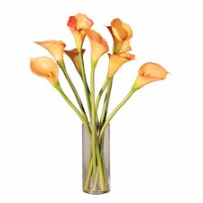 Floral Calla Lilies in Water