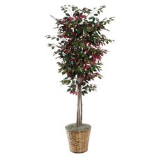Deluxe Artificial Potted Natural Capensia Tree in Basket