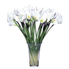 Floral Three Dozen Calla