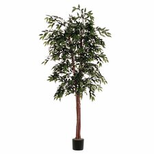 Smilax Deluxe Tree in Pot