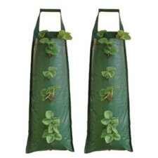 Hanging Flower Tubes (Set of 2)