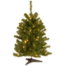 Eastern Spruce Pre-Lit 3' Green Artificial Christmas Tree with 50 Colored & Clear Lights