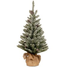 Snowy Concolor Fir 3' Green Artificial Christmas Tree with Stand