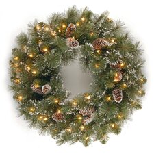 Glittery Bristle Pine Pre-Lit Wreath