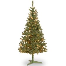 Canadian Fir 6' Green Wrapped Artificial Christmas Tree with 200 Clear Lights