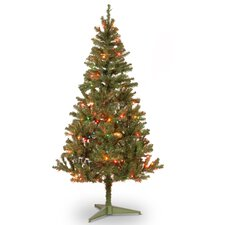 Canadian Fir 6' Green Wrapped Artificial Christmas Tree with 200 Multicolored Lights