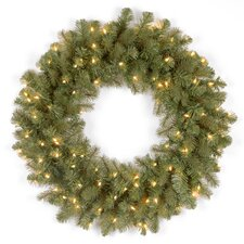 Downswept Douglas Wreath with 50 Clear Lights