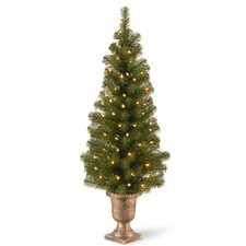 Montclair Spruce 4' Green Artificial Christmas Tree with 50 Colored & Clear Lights