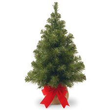2' Green Noble Spruce Artificial Christmas Tree