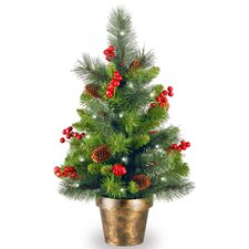 Crestwood Spruce 2' Green Small Artificia Christmas Tree with 35 White Lights with LED