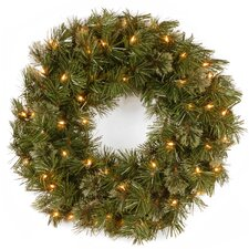 Wispy Willow Lighted Wreath with 50 Clear Lights