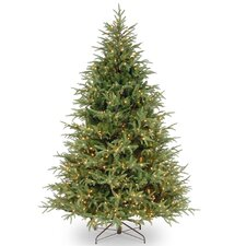 7.5' Frasier Green Grande Artificial Christmas Tree with 1000 Clear Lights with Stand