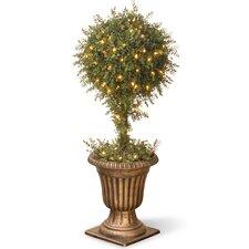 Mini Tea Leaf 1-Ball Topiary Tree in Urn