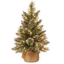 Glittery Bristle 2' Green Pine Artificial Christmas Tree with 15 LED Colored and Warm White Lights with Stand