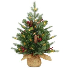 2' Nordic Spruce Christmas Tree with Clear Lights