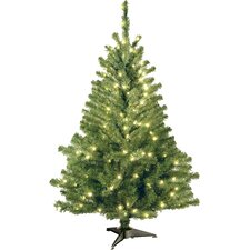 Kincaid Spruce 4' Green Artificial Christmas Tree with 100 Clear Lights