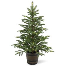 Norwegian 4' Green Spruce Artificial Christmas Tree with 100 Clear Lights