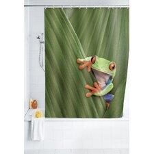 Duschvorhang Frog