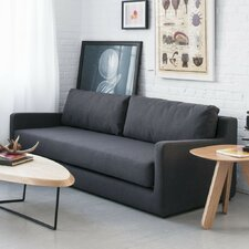 Flip Sleeper Sofa