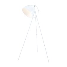 "Don Diego 52.88"" Floor Lamp"
