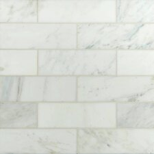 "4"" x 12"" Polished Marble Tile in Carrara White"