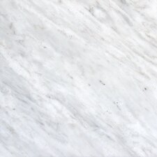 12'' x 12'' Marble Field Tile in Arabescato Carrara