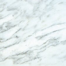 "18"" x 18"" Marble Field Tile in Arabescato Carrara"