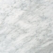 12'' x 24'' Marble Field Tile in Carrara White